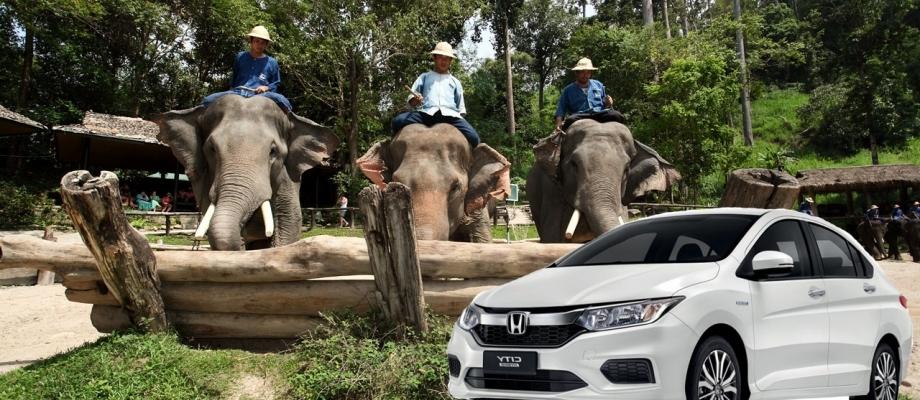 MAE SA ELEPHANT CAMP/MAE TAMAN ELEPHANT CAMP