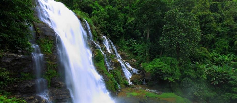 Trekking & Sightseeing at Doi Inthanon National Park Pha Dok Seaw