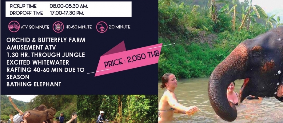 One day amusement ATV , whitewater rafting & Elephant riding