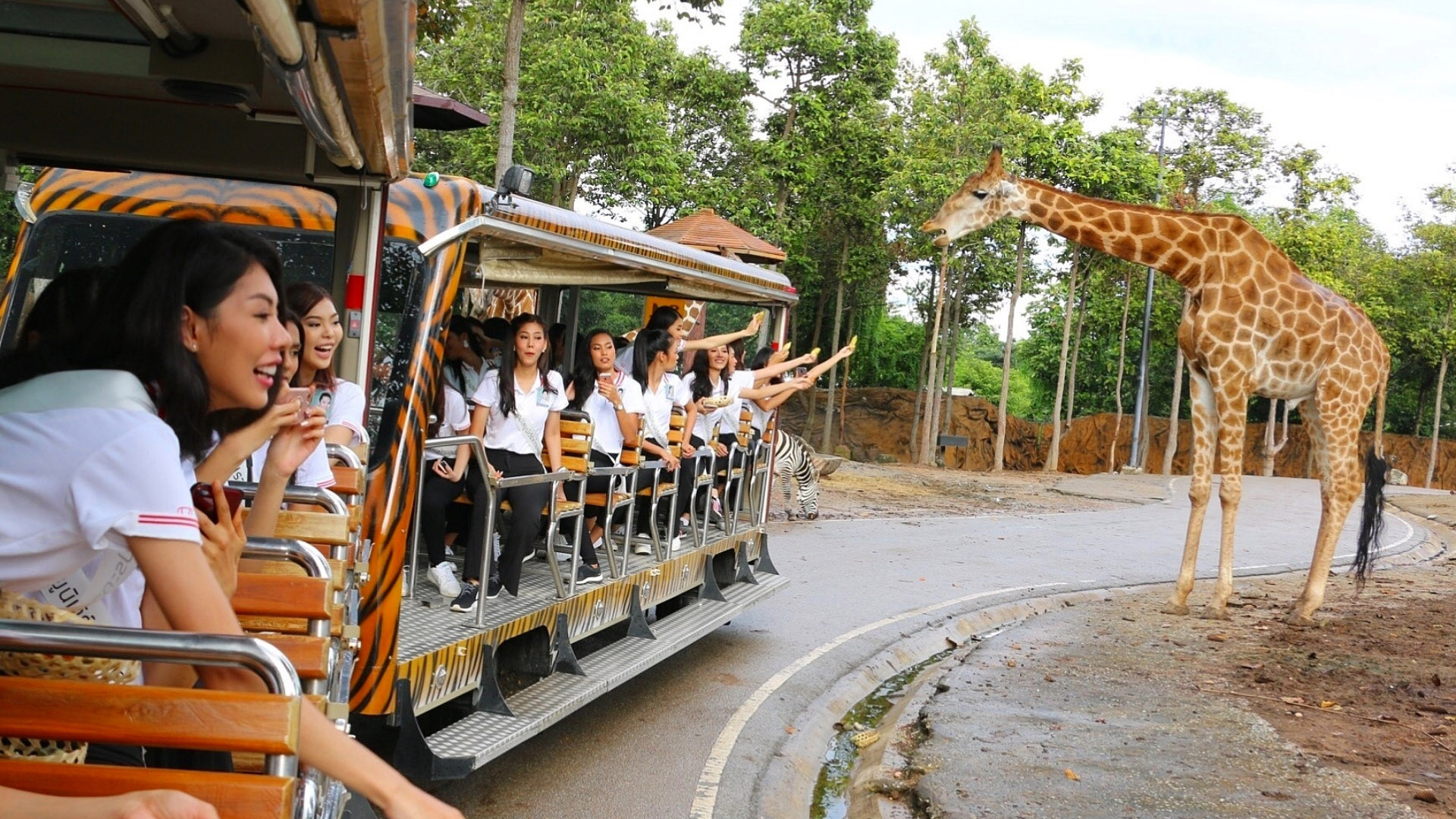 Chiang Mai Family Friendly Attractions